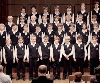 Parasol Island's boys' choir singing Mad World get a million hits in two weeks