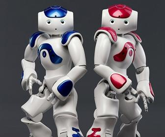 Robots at home and work: where are we now?