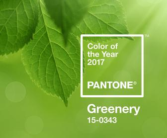 The Pantone Colour of the Year 2017 is Green
