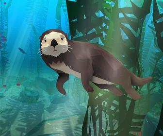 Swim alongside Californian sealife in BBC Studios' VR game for a unique new headset you can move around in