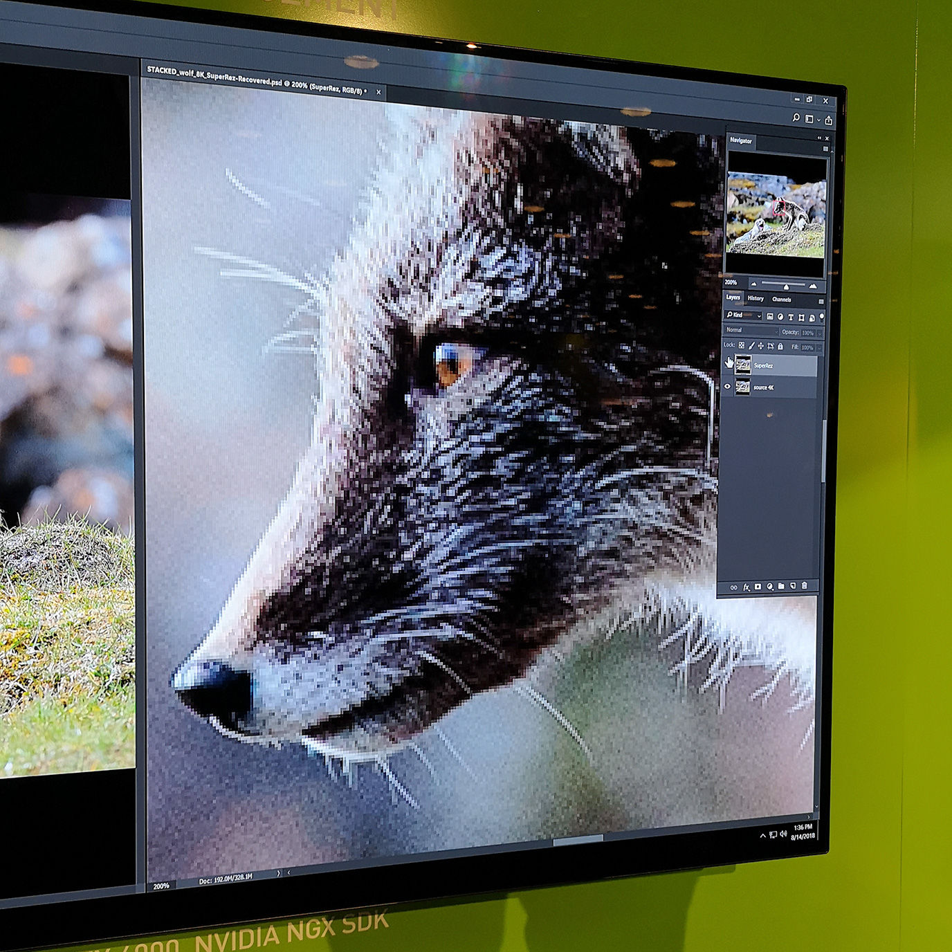 How AI is powering groundbreaking Photoshop and Premiere plugins