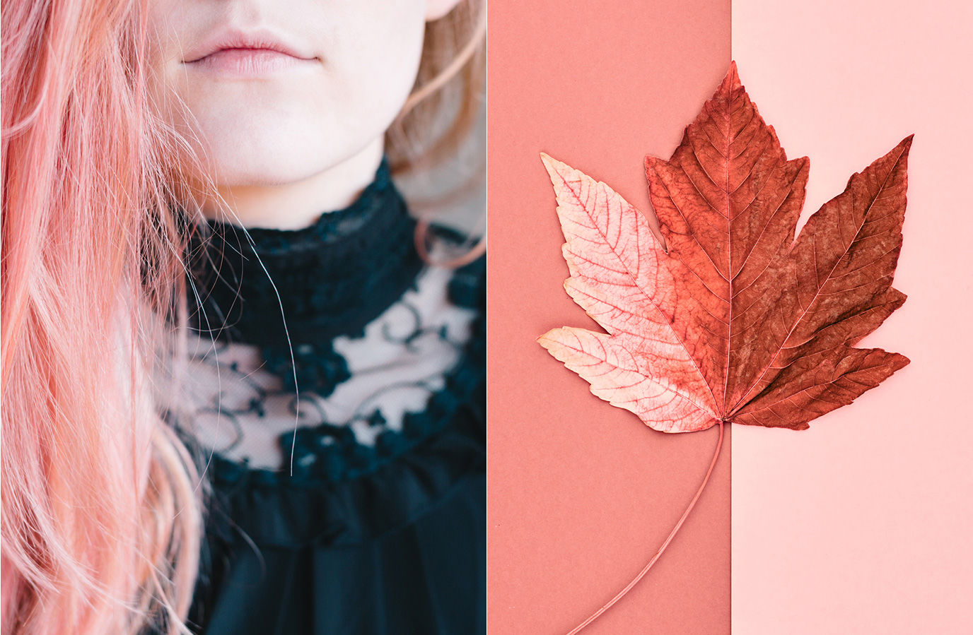 2019's Visual Trends (according to stock libraries
