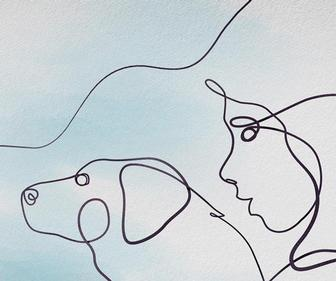 What do you get when you mix Louis Theroux with dogs and one-line illustrations?