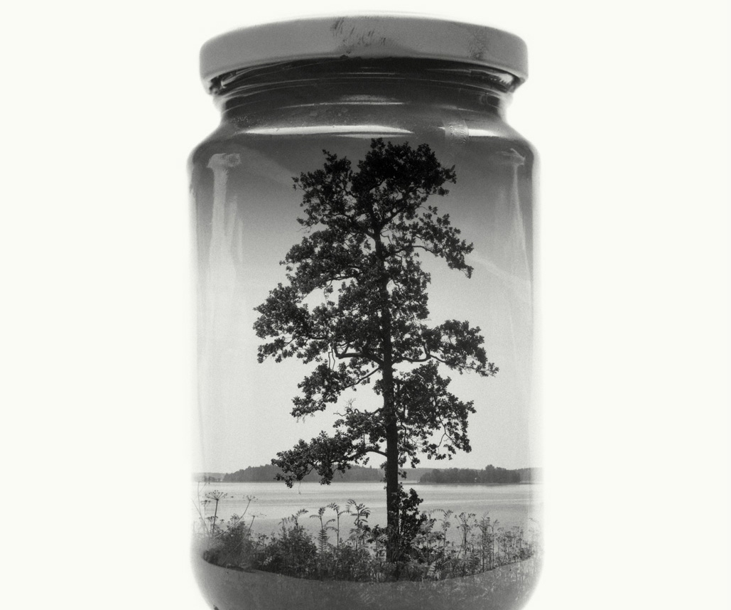 These stunning landscapes in jars needed no Photoshop