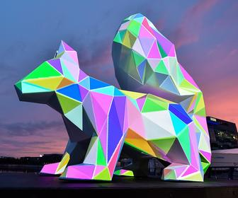 This projection mapping project explores our relationship with endangered species