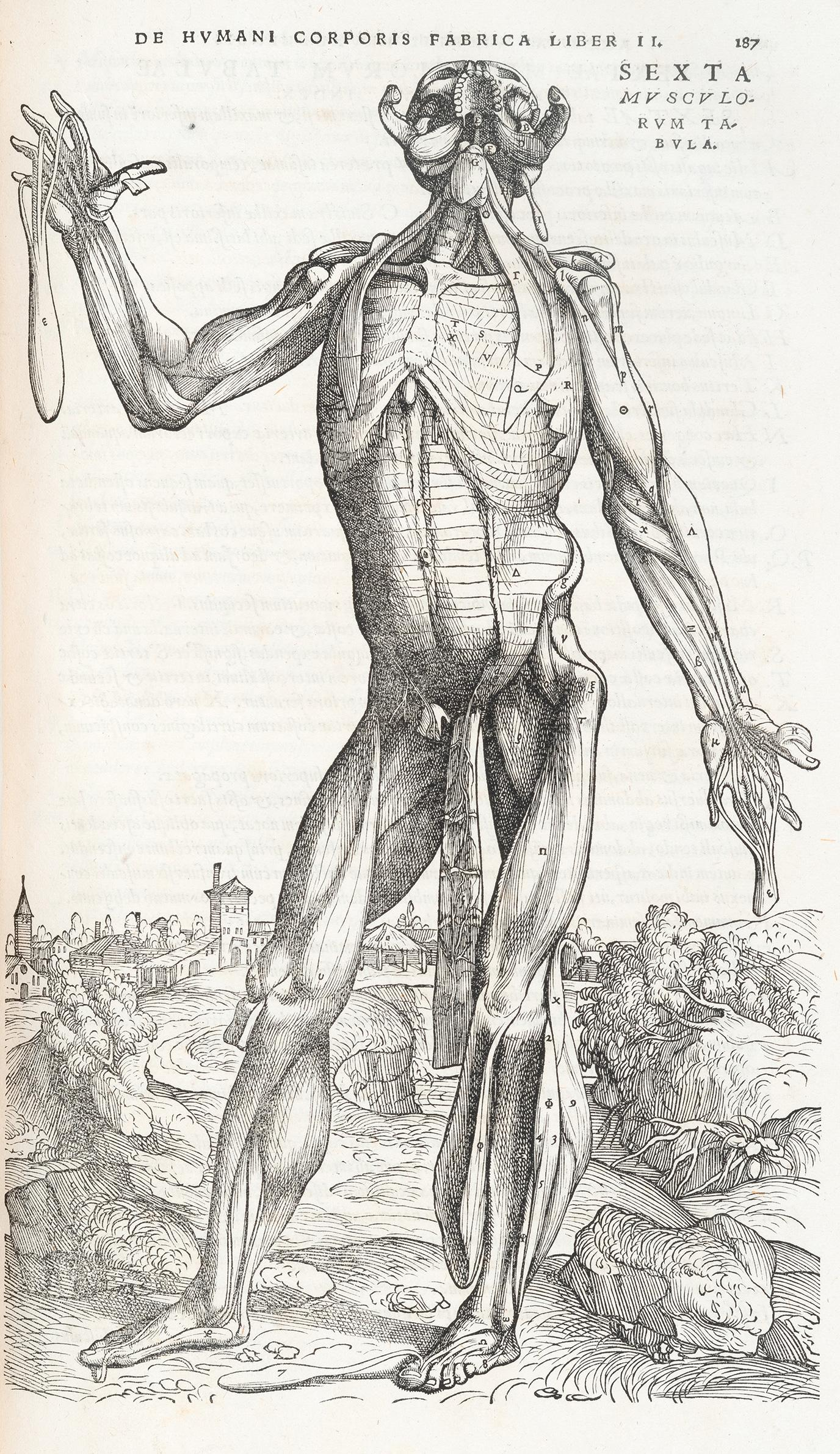 These rare medical illustrations detail how we've viewed the